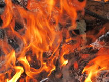 Wood Burning. This is wood burning closeup of tree branches in a fire here in Wisconsin Royalty Free Stock Images