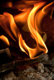 Wood burning on fire Royalty Free Stock Image