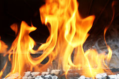 Wood burning in fire Stock Photography