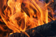 Wood burning in fire Royalty Free Stock Image