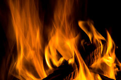 Wood burning in a fire  on black background Royalty Free Stock Image