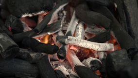 Wood burning fire stock video footage
