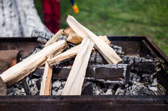 Wood burning in a fireplace Stock Images