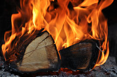 The wood burns on fire Stock Images