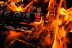 The wood burns on fire Royalty Free Stock Photo
