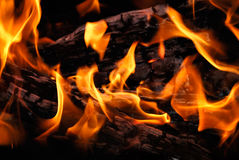 The wood burns on fire Royalty Free Stock Photos
