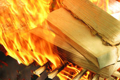 Wood burns on fire Stock Photography