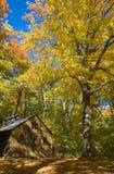 Wood Cabin Stock Image