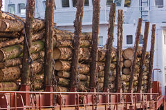 Wood Cargo Royalty Free Stock Image