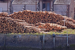 Wood Cargo Royalty Free Stock Photography