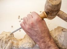 Wood carving. With work tools Royalty Free Stock Images