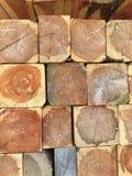 Wood cedar logs Stock Photo