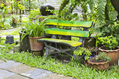 Wood chair in the garden. Wood chair near tree pot in the garden Stock Photography