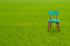 Wood chair on Green Grass Royalty Free Stock Image