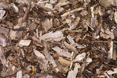 Wood chip background Royalty Free Stock Photography