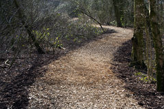 Wood chip footpath Royalty Free Stock Photo