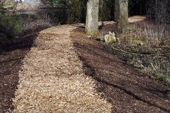 Wood chip footpath Stock Image