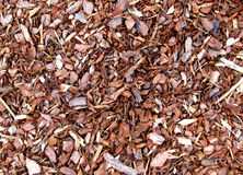 Wood Chip Garden Mulch Royalty Free Stock Photos