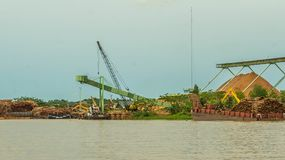Wood chip stockpile factory on Mahakam riverbank. Industrial background royalty free stock image