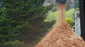 Wood chip stockpile stock footage