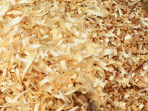 Wood chip texture. Close-up of wood chips Stock Photography
