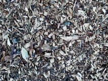 Wood chip texture background Royalty Free Stock Photo