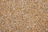 Wood chip texture background Stock Image