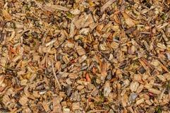 Wood chiper Fotografering för Bildbyråer