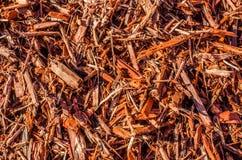 Wood chiper, komposttäckning eller skönhetskäll Royaltyfri Bild