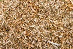 Wood chiper, når att ha beskurit av träd från slut arkivbilder