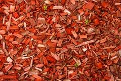 Wood chiper och gröna stammar Arkivfoto