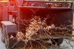 Wood chipper blowing tree branches cut a portable machine used for reducing wood chips. Of cut trees after the storm stock images