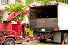 Wood chipping machine. Shredding wood into back of truck Royalty Free Stock Image
