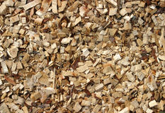 Wood Chippings stock images