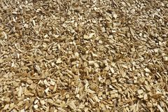 Wood chippings Royalty Free Stock Image
