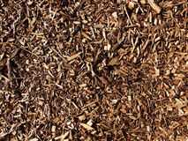 Wood Chippings. Spread across ground Royalty Free Stock Photography