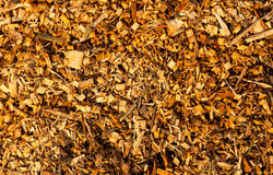 Wood Chippings. Bark or wood chippings of different shapes and sizes stock photos