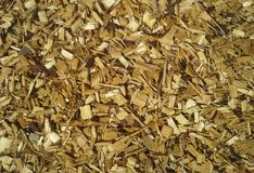 Wood Chippings. Golden wood chippings on the ground stock photo