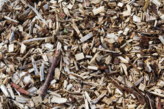 Wood chippings. Good for a background texture. Close up of wood chippings. Good for a background texture stock photos