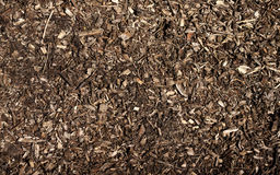 Wood chippings Stock Photography