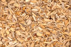Wood chips. Texture of small wood chips stock photography