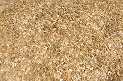 Wood chips. Stock Image