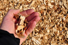 Wood chips stock images
