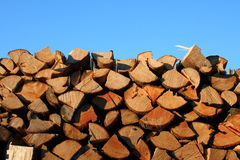 Wood chips. A stack piled logs, blue sky in the background stock photo