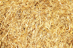 Free Wood Chips Royalty Free Stock Image - 19694466