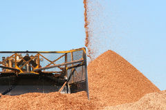 Wood chips. Large earth mover scoop with pouring wood chips royalty free stock photos