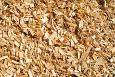 Wood chips. For ecology heating Stock Image