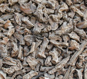 Wood chips background Royalty Free Stock Image