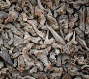 Wood chips background Stock Photos