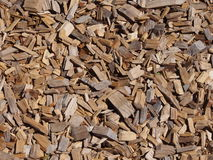 Wood chips. Background with wood chips on the ground Royalty Free Stock Image